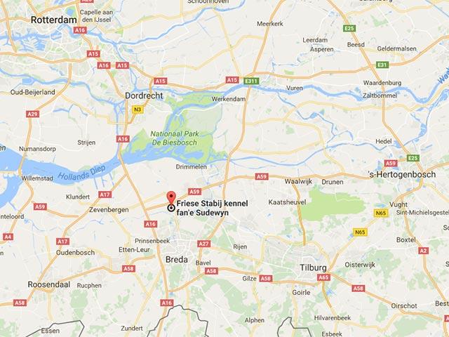 Routebeschrijving naar Friese Stabijkennel fan'e Sudewyn