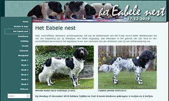 Friese Stabij pups, Eabele nest