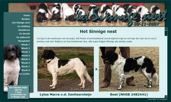 Friese Stabij pups, Sinnige nest