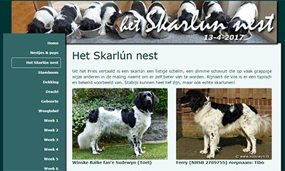 Friese Stabij pups, Skarlún nest